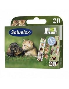 Salvelox 20 Apósitos Animal...